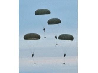 CSR Inc. Military Parachute Cord